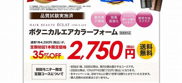 ボタニカル エアカラーフォーム お試し 2750円 最安値 ダークブラウン/ナチュラルブラック