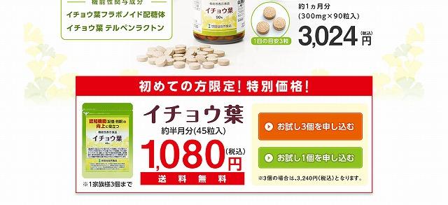 世田谷自然食品 イチョウ葉 お試し 1080円 世田谷のイチョウ葉